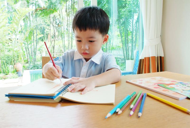 พัฒนาการ, พัฒนาการเด็กอายุ 2 ปี, เด็กอายุ 2-3 ปี, เด็กอายุ 3-4 ปี, เด็กอายุ 4-7 ปี, เตรียมเข้าโรงเรียน