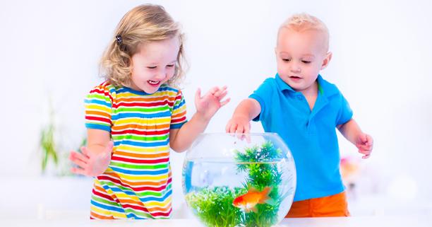 ลูกเล่นน้ำ, เด็กเล่นน้ำ, เล่นกับน้ำ, เล่นในน้ำ, การเล่นของเด็ก, การเรียนรู้ของเด็ก, พัฒนาการเด็ก, ลูกฉลาด, เด็กฉลาด, โอวัลตินสมาร์ท, Ovaltine Smart