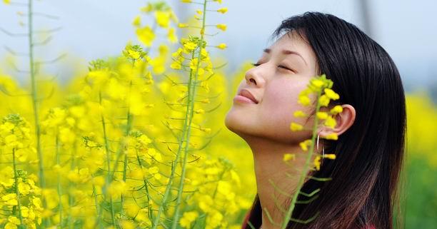ดอกไม้, ดอกไม้บำบัด, ดอกไม้บำบัดโรค, สุขภาพ, ดอกกุหลาบ, ดอกมะลิ, สีบำบัดโรค, กลิ่นบำบัดโรค, สารสร้างสุข, เซโรโทนิน, Serotonin, ดอกดาวเรือง, ดอกลาเวนเดอร์, ดอกเจอราเนียม, ดอกกระดังงา, โรคเครียด, โรคไมเกรน, โรคเลือด, โรคผิวหนังอักเสบ, ซึมเศร้า
