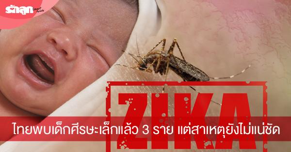 ไวรัสซิกา,ซิกา,zika,ตั้งครรภ์,ลูกพิการ,เด็กพิการ,พิการสมอง,สมองโต,ลูกพิการ,ยุงกัด,ตั้งท้อง